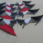 The kites of Berck...