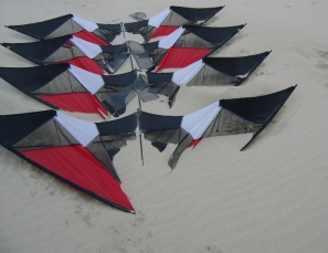 The kites of Berck...